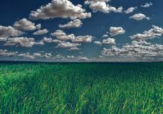 杨奕骁:农业3.0时代下富硒产业的机会与挑战