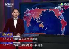"""何力生:央视赏味""""火锅配活体菇"""",健康美食新潮流兴起"""