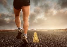 韩禹:为什么人的脚不进化成轮子,岂不是更快?